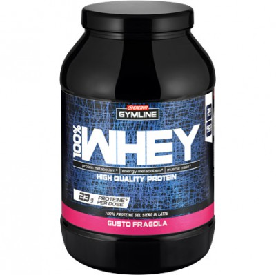 100% Whey Protein Concentrate (900g)