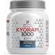 KyoRAM (300cps)