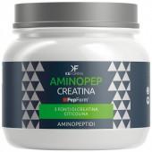 AminoPEP Creatina (180g)
