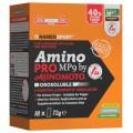AminoPro MP9 Orosolubile (18x4g)