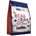 BCAA 2:1:1 Powder (500g)
