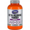 Beta Alanine Pure Powder (500g)