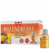 Bio Enerfast (14x12ml)