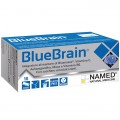 BlueBrain (10 stick)