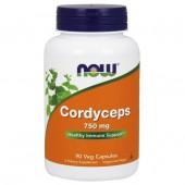 Cordyceps 750mg (90cps)