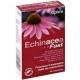 Echinacea Fast (20cps)