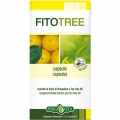 FitoTree (30cps)