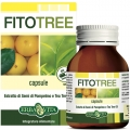 Fitotree Capsule (60cps)