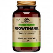 Fitowhitania (60cps)