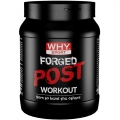 Forged Post Workout (600g)