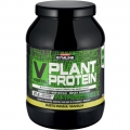 Plant Protein (900g)
