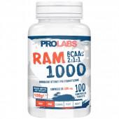RAM 1000 (100cpr)