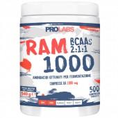 RAM 1000 (500cpr)
