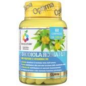 Rhodiola Rosea Plus (60cps)